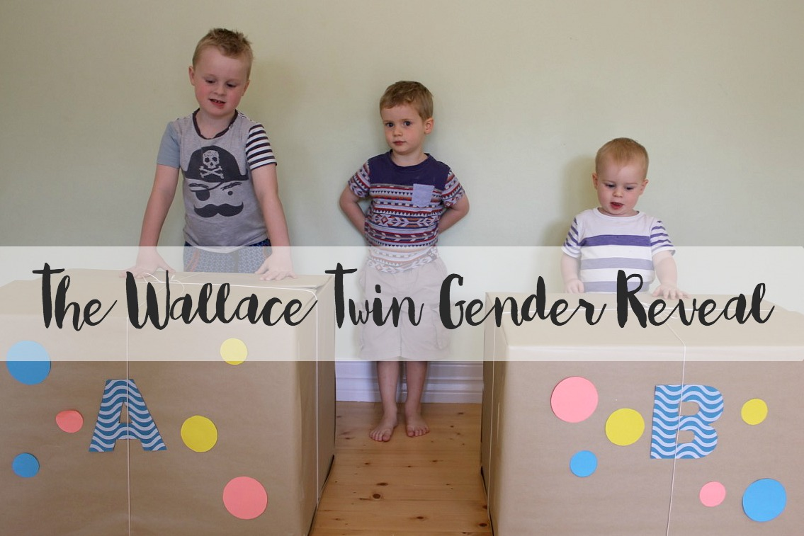 twin gender reveal