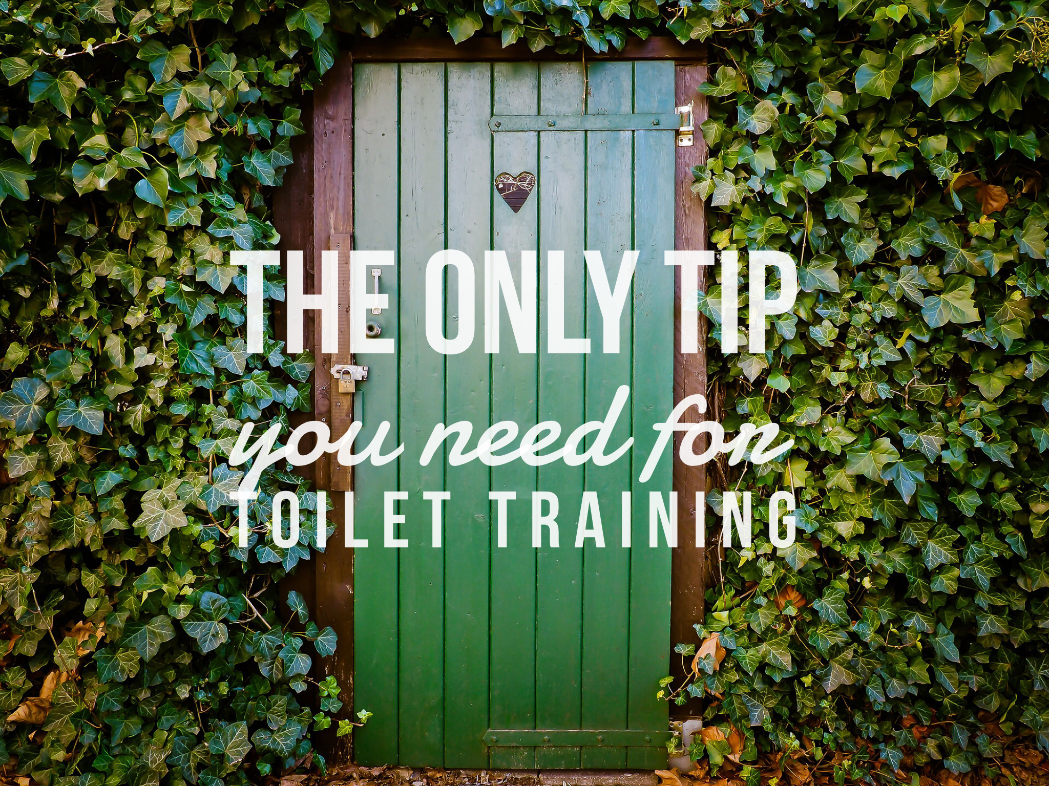the only tip you need for toilet training - life on wallace